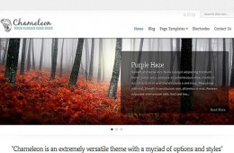 Chameleon Responsive WordPress Theme