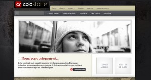 ColdStone WordPress Theme